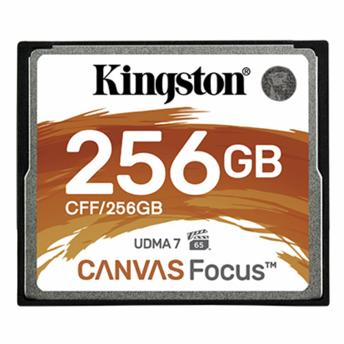 256GB CF CARD CANVAS FOCUS KIN